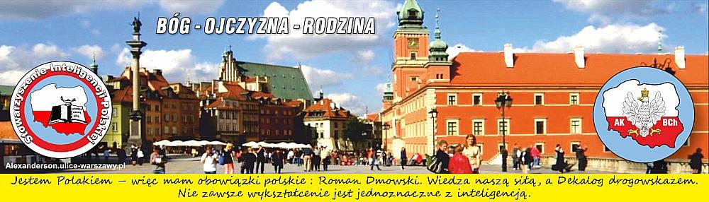 Stowarzyszenie Inteligencji Polskiej